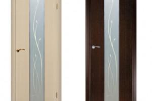 Межкомнатные двери из венге и дуба